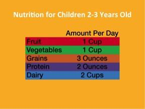 0 to 5 Baby and Toddler Nutrition PowerPoint and Handout Lesson - DOWNLOAD - Nutrition Education Store