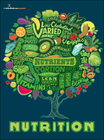 Tree of Nutrition Poster - Nutrition Education Store