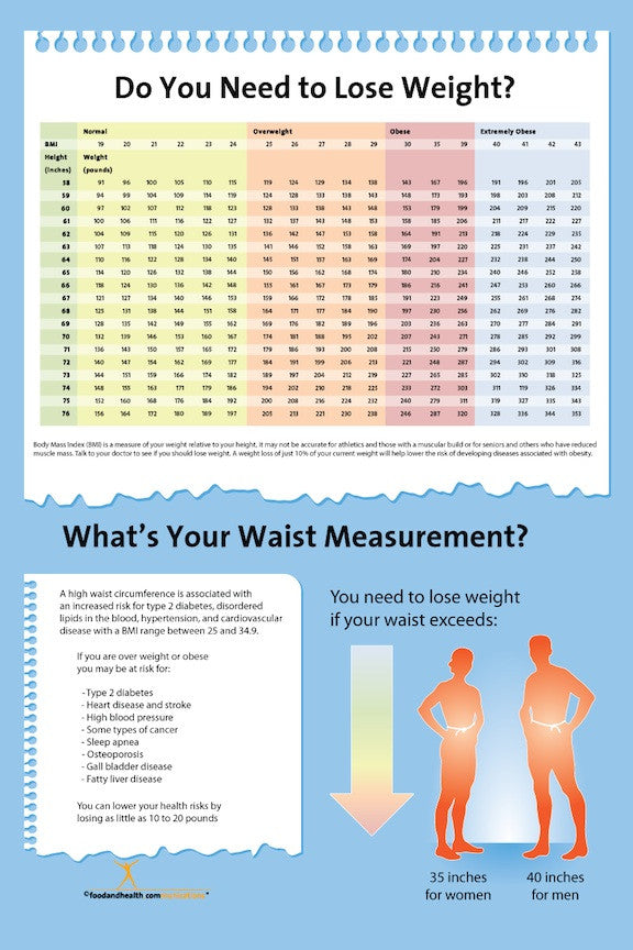 Exam Room BMI Index Chart Poster 12x18 - Nutrition Education Store