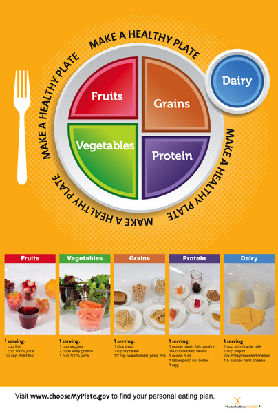 Exam Room My Plate Poster 12x18 - Nutrition Education Store