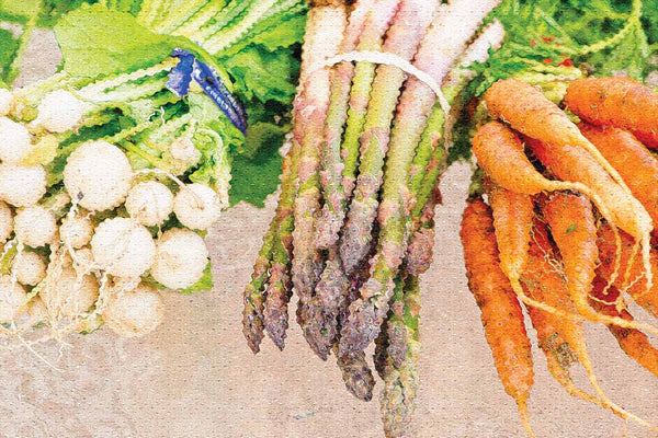 3 pack Farmers Market Vegetable Oil Painting Photos Poster 12X18