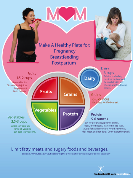 MyPlate for Pregnant and Breastfeeding Moms Poster English Spanish Bilingual 2 in 1