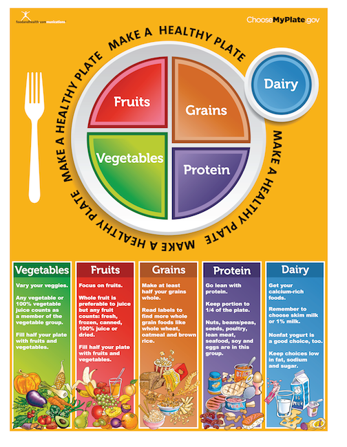 picture relating to Myplate Printable referred to as MyPlate Handout Tearpad