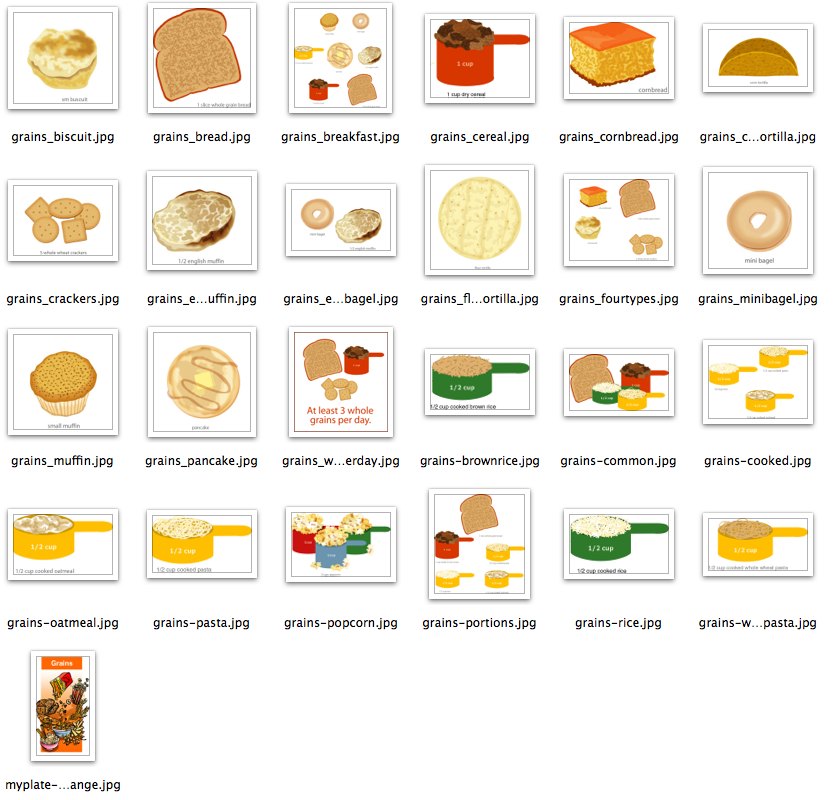 MyPlate Food Groups Clip Art