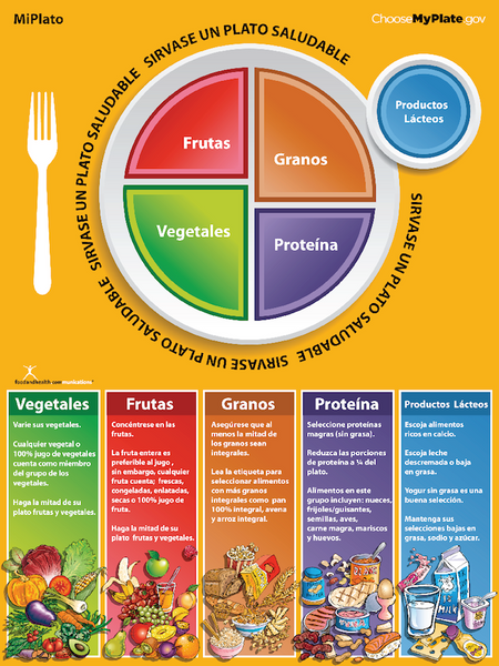 MiPlato MyPlate Spanish Poster - My Plate's Message in Spanish - My Plate Poster - Nutrition Education Store