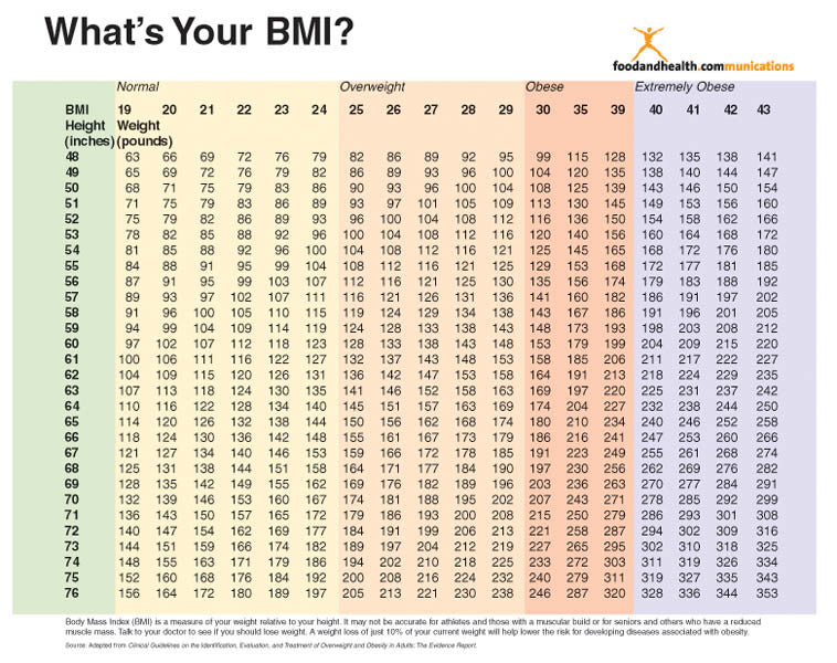 Bmi Poster 1615 Nutrition Education Store
