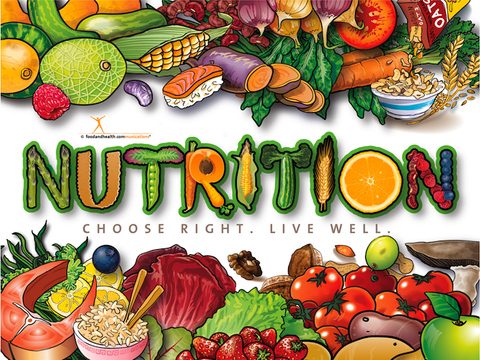 Nutrition Poster - Healthy Food Poster - Nutrition Month Poster - Nutrition Education Store