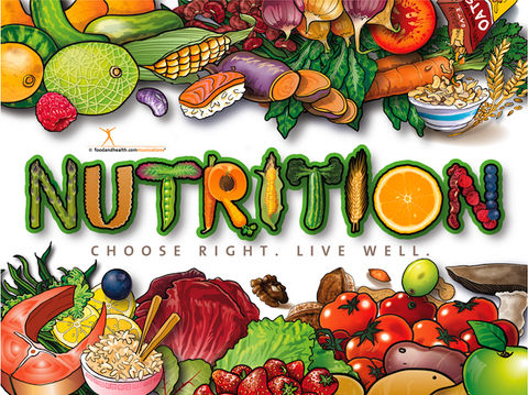 Nutrition Poster - Healthy Food Poster
