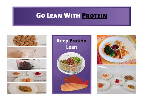 Protein Bulletin Board Kit - Nutrition Education Store