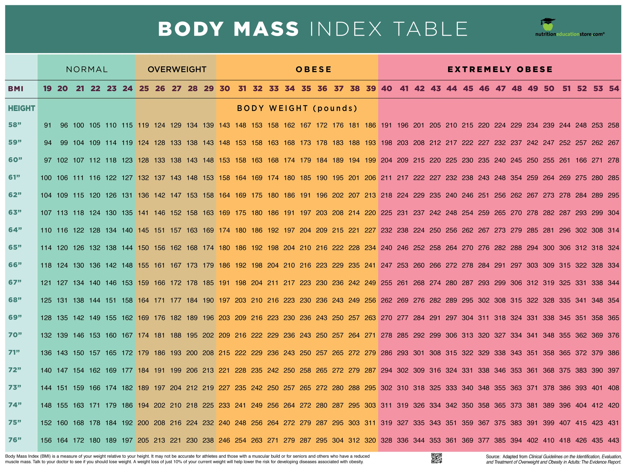 "BMI Poster - BMI Chart Poster - Body Mass Index Poster - 18"" x 24"" Poster - Laminated - Nutrition Education Store"