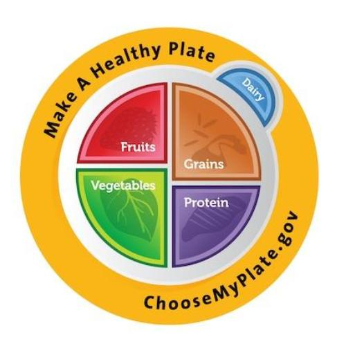 MyPlate Pins Packs of 10 - MyPlate Buttons - Nutrition Education Store