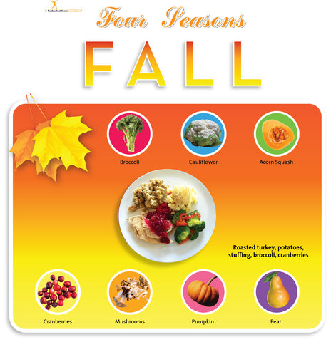 "Fall Season Bulletin Board Banner 24"" x 24"" Square Banner for Bulletin Boards, Walls, and More - Nutrition Education Store"