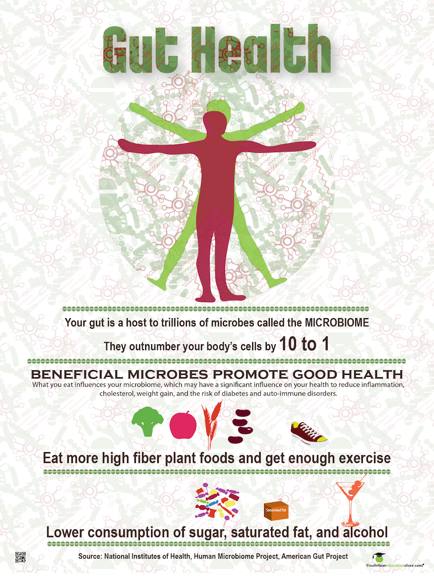 "Gut Health Poster - Microbiome Poster 18"" x 24"" Laminated - Nutrition Education Store"