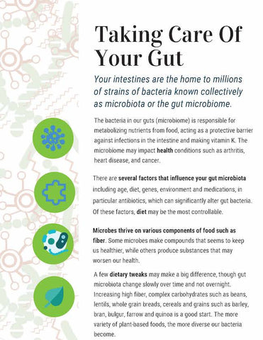 Microbiome PowerPoint and Handouts - Gut Health PowerPoint  - DOWNLOAD