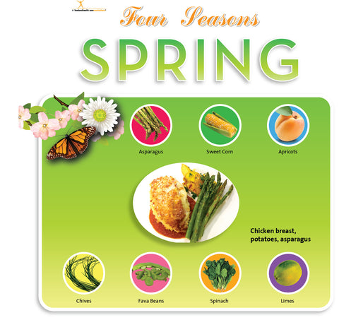 "Spring Season Bulletin Board Banner 24"" x 24"" Square Banner for Bulletin Boards, Walls, and More"