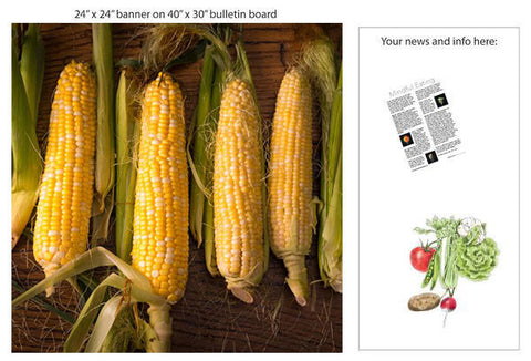 "Fresh Corn 24"" Square Banner for Bulletin Boards and Walls - Nutrition Education Store"
