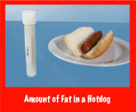 Fat Test Tubes - Nutrition Education Store