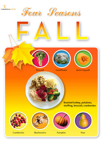 4 Seasons Poster Value Set - for Bulletin Boards and More! - Nutrition Education Store