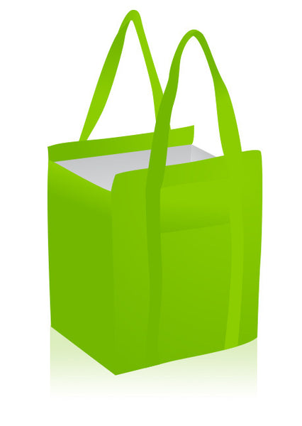 Cooler Tote Bag for Cooking Demos and Nutrition Prizes and Giveaways - Nutrition Education Store