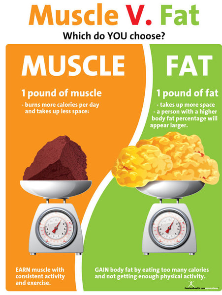Muscle Versus Fat Poster - 1 Pound Muscle Versus 1 Pound Fat - Exercise Poster - Fitness Poster - Nutrition Education Store