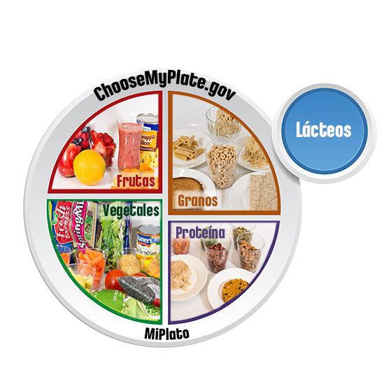 "MyPlate Clear Window Cling 12"" x 12"" - Spanish"