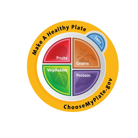 MyPlate Plate Plastic - Nutrition Education Store Exclusive Design - 1 Plate With Free Shipping