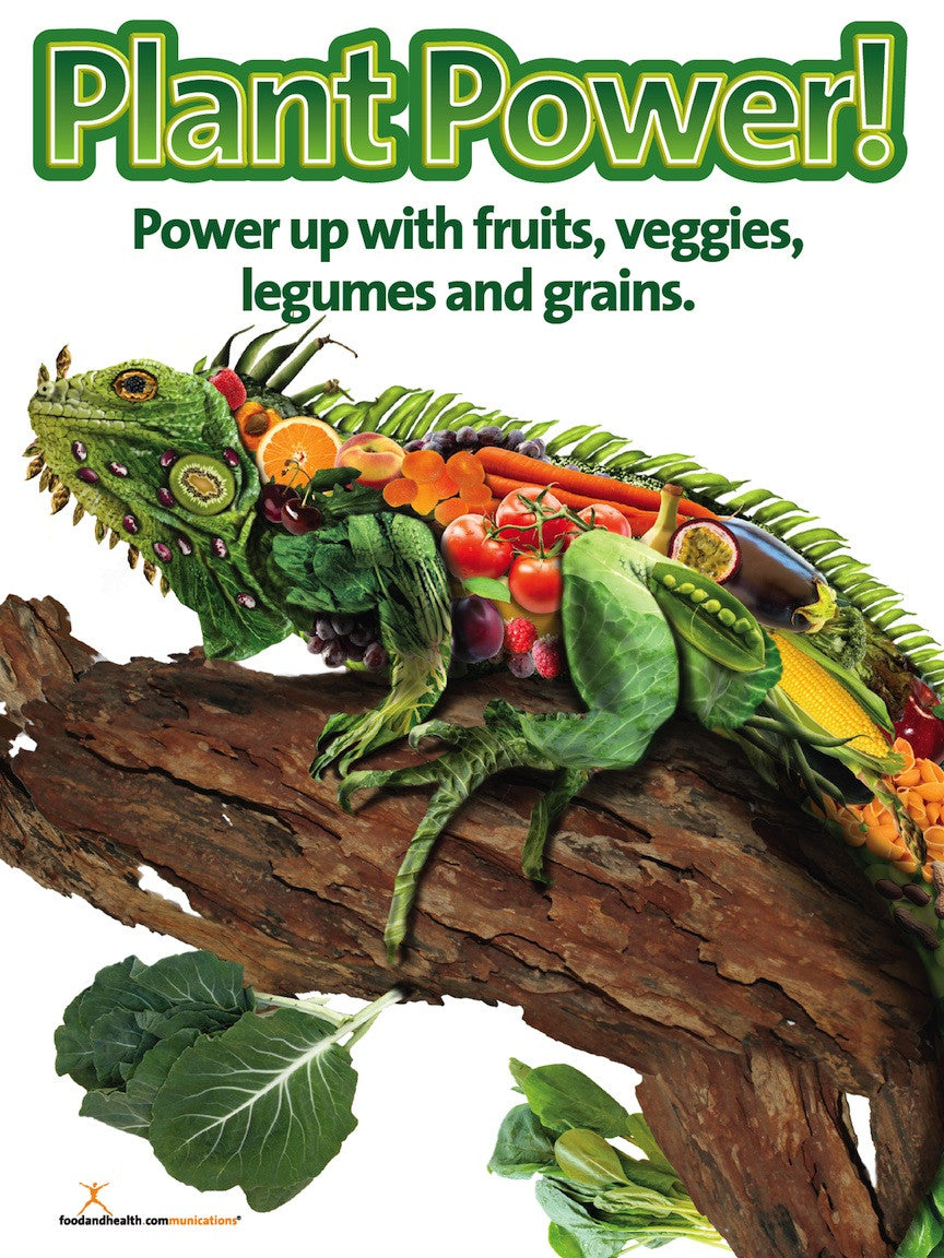 Plant Power Poster for Fruit and Vegetable Promotion - Nutrition Poster - Motivational Poster - Nutrition Education Store