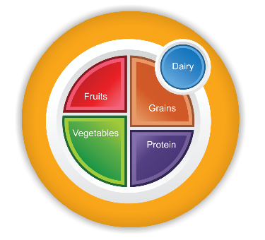 MyPlate Magnets Packs of 10 - Nutrition Education Store