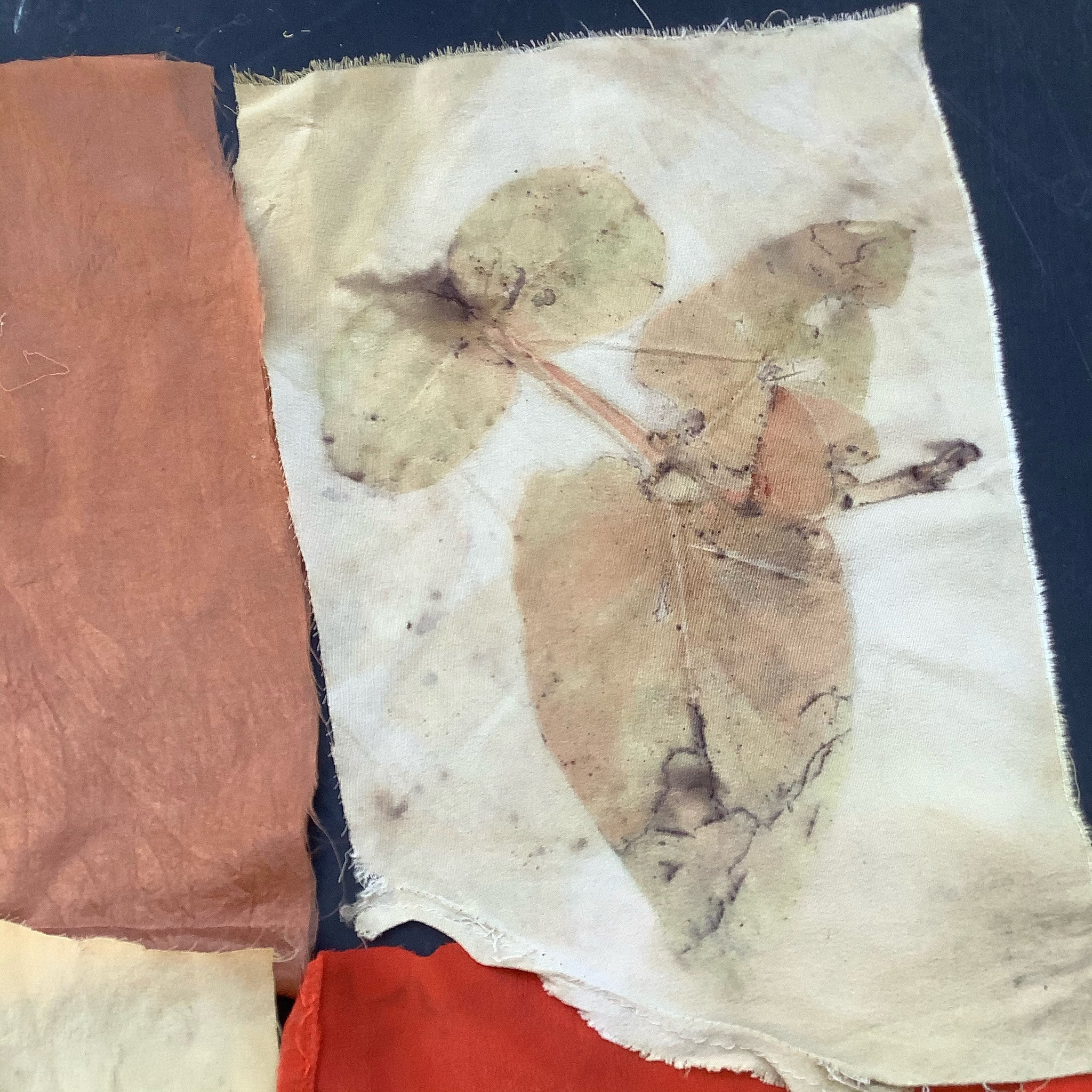 Eucalyptus Print on silk No.15