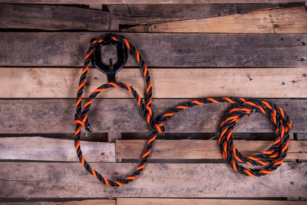 Poly Rope Cow halter.