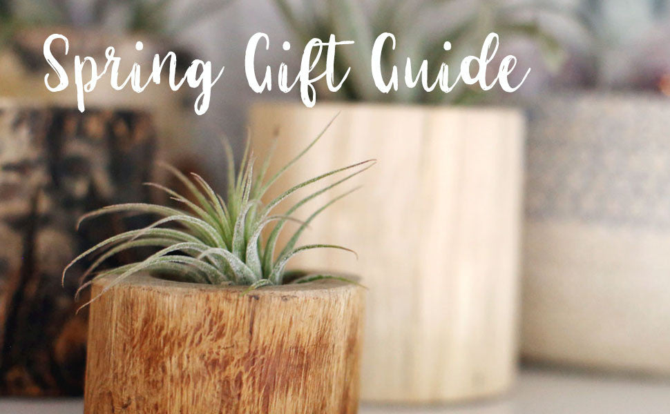 Unique Gifts for Spring Holidays