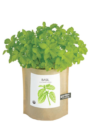 Organic Basil Grow Kit