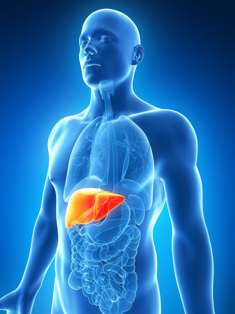 Medical Marijuana: Treating Liver Disease