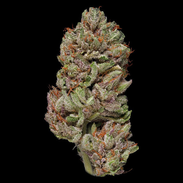 Best Bubba Kush Strain Organic Cannabis Green Door West