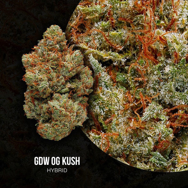 Adults Only 21 Up: Best GDW OG Kush Strain - Organic Cannabis