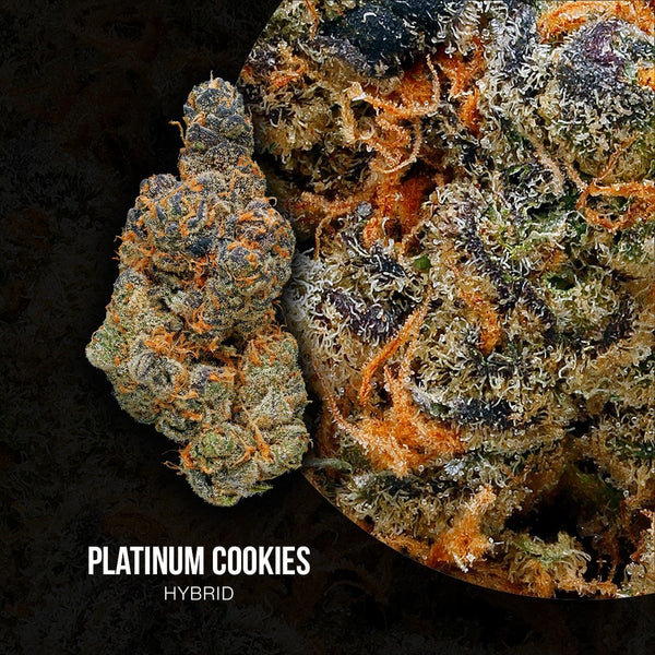 Green Door West - Platinum Girl Scout Cookies - GreenDoorWest.com - 2