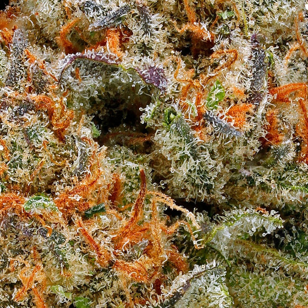 Green Door West - Fruity Pebbles - GreenDoorWest.com - 3