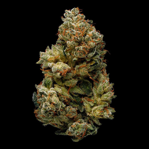 wedding cake strain seed finder best gorilla glue 4 strain organic cannabis green 25757
