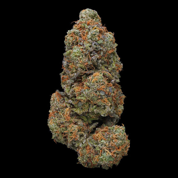Green Door West - GrandDaddy Purple - GreenDoorWest.com - 1