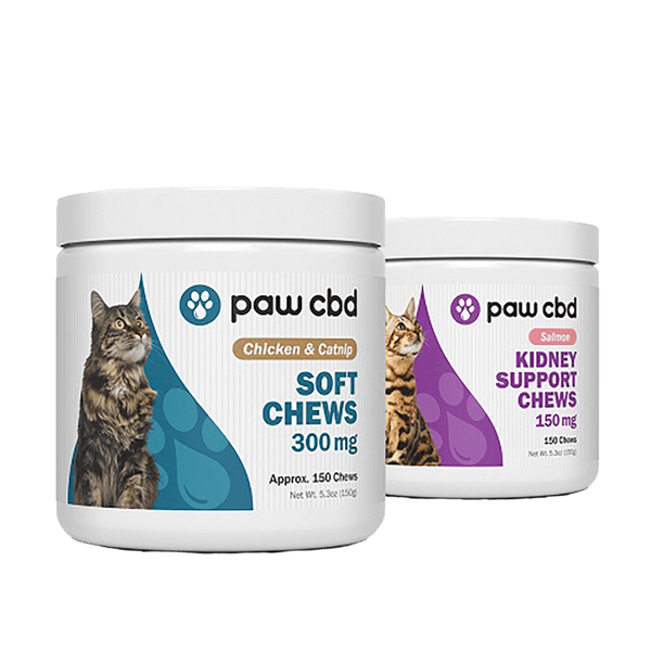 Paw CBD Soft Chews for Cats