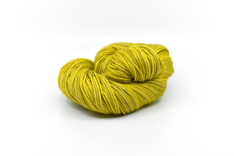 Audubon Worsted - Citrine