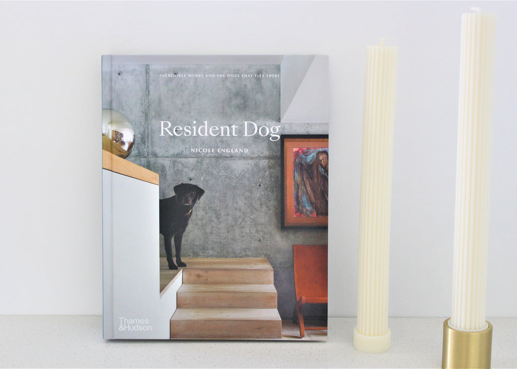 Resident Dog - Book - Gifts box- Melbourne - Architecture - Dogs- photography