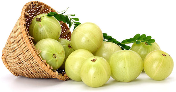 Amla and How It Can Aid You In Many Different Ways