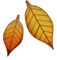 Download Fallen Leaf Emoji In PNG