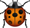 Download Lady Beetle Emoji In PNG