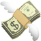 Download Money with Wings Emoji