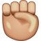 Download Raised Fist Emoji