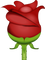 Download Rose Emoji In PNG
