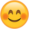 Download Smiling Face Emoji with Blushed Cheeks