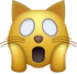 Download Omg Cat Emoji face [Iphone IOS Emojis in PNG]